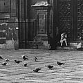 The Zocolo Mexico City Mexico 1970 by David Lee Guss