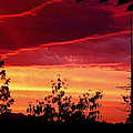 Thee Sunset Of Summer 2014 by Kym Backland