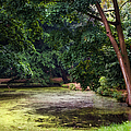 There Is Always A Hope. Park Of De Haar Castle by Jenny Rainbow