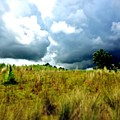 There's A Storm Brewing!!! #golf by Scott Pellegrin