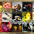 Things I Like by Randi Grace Nilsberg