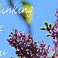 Thinking Of You - Greeting Card - Lilacs by Barbara Griffin