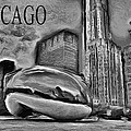 This Is Chicago by Ely Arsha