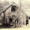 This Old Barn by Cricket Hackmann