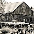 This Old Farm by Cheryl Baxter