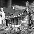 This Old House by Guy Whiteley