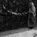 This Old Woman Was In Her Youth During The 1910-1920 Mexican Revolution Guadalajara Jalisco Mexico  by David Lee Guss