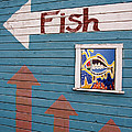 This Way To The Fish by Carol Leigh