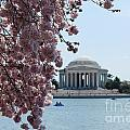 Thomas Jefferson Memorial by DejaVu Designs