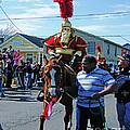 Thoth Parade Rider by Lizi Beard-Ward