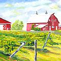 Thousand Islands Winery-september by Robert P Hedden
