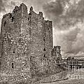 Threave Castle In Grey by James Anderson