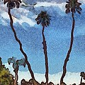 Three Abstract Palm Trees  by Barbara Snyder