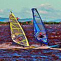 Three Amigo Windsurfers by Joseph Coulombe