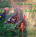 Three Amigos Happy Birthday Husband by Joyce Dickens
