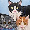 Three Amigos by Jamie Frier