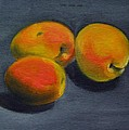 Three Apricots by Sarah Lynch