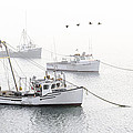 Three Boats Moored In Soft Morning Fog  by Marty Saccone