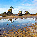 Three Brothers Rock Formation Near The Oregon Coast by Jamie Pham