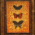 Three Butterflies Two by Sandra Dawson