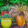 Three Colorful Pots by Gary Richards