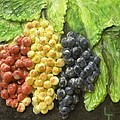 Three Colors Of Grapes by Lorrie T Dunks