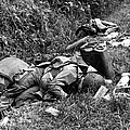 Three Dead U.s. Airborne Troops by Everett
