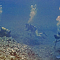 Three Divers In Hawaii by Bill Owen