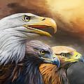 Three Eagles by Carol Cavalaris