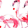 Three Flamingos by Dawn Derman