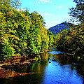 Three Forks Williams River Early Fall by Thomas R Fletcher
