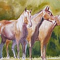 Three Horses by Tamara Scantland Adams