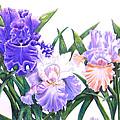 Three Irises by Laura Wilson