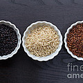 Three Kinds Of Rice by Edward Fielding