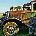 Three Old Fords by Randy Harris