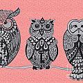Three Owls On A Branch Pink by Karen Larter