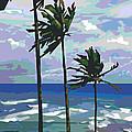 Three Palms by Douglas Simonson