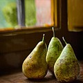 Three Pears In The Window by Bob Coates