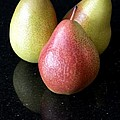 Three Pears - Still Life by Wendy Wilton