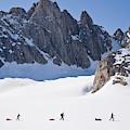 Three People Ski-tour On Karale Glacier by Henry Georgi
