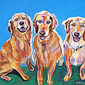 Three Playful Goldens by Julie Maas