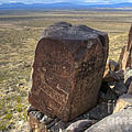 Three Rivers Petroglyphs 3 by Bob Christopher