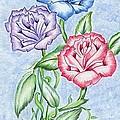 Three Roses by Bill Richards
