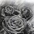 Three Roses by Eileen Sleckman