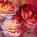 Three Roses Red Greeting Card by Carol Cavalaris