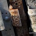 Three Shades Of Rust by Donato Iannuzzi