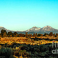 Three Sisters by Robert Bales