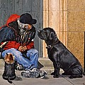 Three Strays by Barry BLAKE