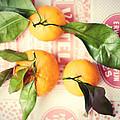 Three Tangerines by Lupen  Grainne