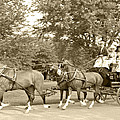 Three Team Four Wheel Cart by Wayne Sheeler